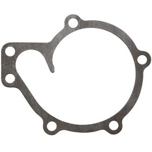 1014149C1 Gasket, Water Pump