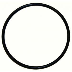 350840R1 Ring, Seal