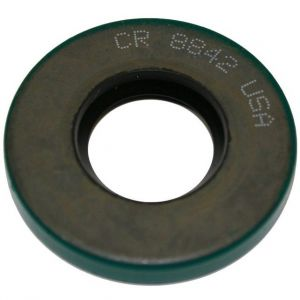 363781R91 Oil Seal, Thompson Pump