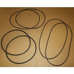 539535R91 Brake O-ring Kit