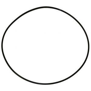 973631C1 O-Ring